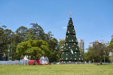 Christmas tree at Ibirapuera in Sao Paulo city.