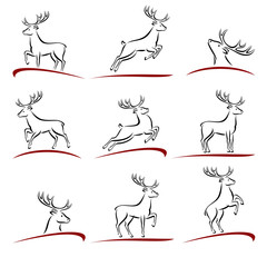 Deer set. Vector