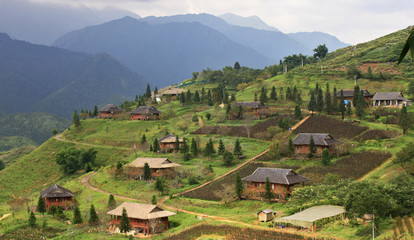Top view of agriculture terraced rice and hut on the hill