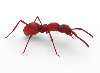 3d illustration of red jelly ant. white background isolated. icon for game web.
