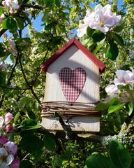 Vogelhaus in einem blühenden Apfelbaum