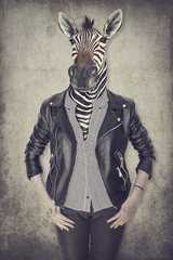 Foto op Canvas Hipster Dieren Zebra in clothes. Concept graphic in vintage style.