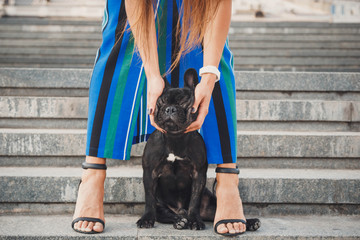 Black french bulldog puppy sitting on stairs between female legs