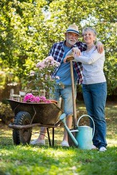 Senior couple gardening in the garden