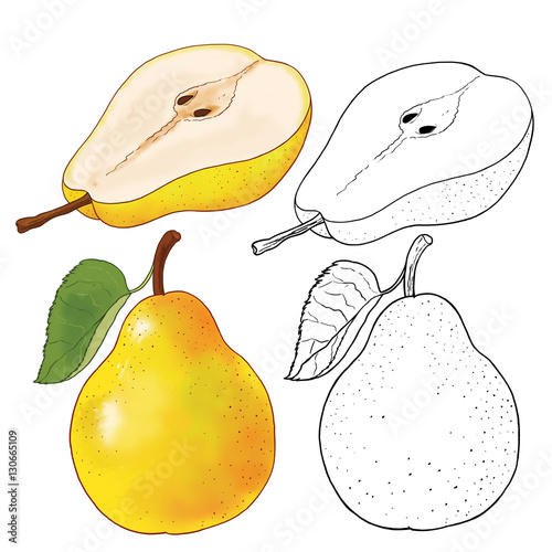 Coloring Page. Pear. Illustration For Children