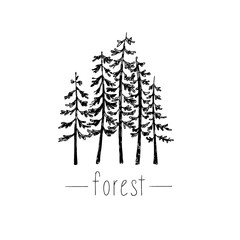 Hand drawn vector illustration with wild forest.