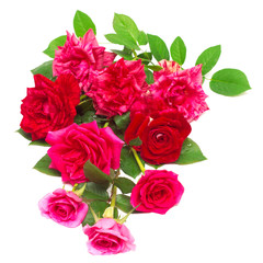 A beautiful bouquet of red flowers