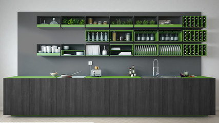Scandinavian gray kitchen with wooden and green details, minimal