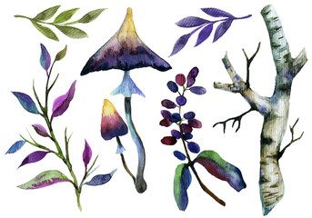 Watercolor composition with hand painted pagan forest plants