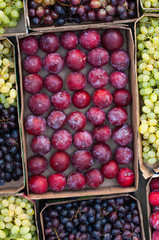 Assorted fruits at farmers market.