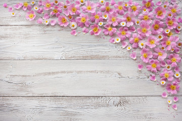 Wooden background with pink flowers, petals, roses and daisies