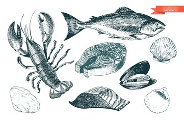 Vector hand drawn set of seafood icons. Lobster, salmon, fillet and clams. Engraved art. Delicious food menu objects.