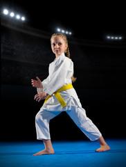Little girl martial arts fighter