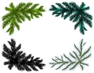 Set. Blue, black, white and green Christmas tree branches on an isolated  background. illustration