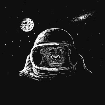 monkey astronaut in outer space