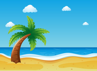 Ocean scene with coconut tree on beach