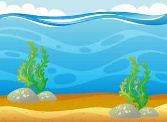 Ocean scene with seaweed underwater