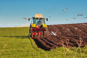 Landwirtschaftliche Bodenbearbeitung mit dem Pflug