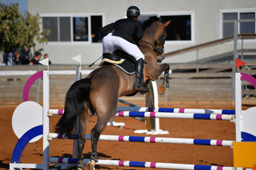 Rider on horse jumping over a hurdle during the equestrian event