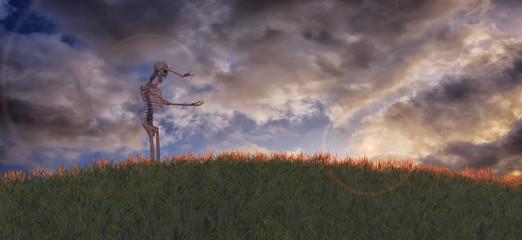 3D illustration of skeleton