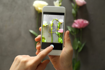 Female hands taking photo of beautiful flowers with smartphone