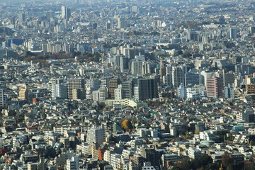 capital city of Japan view with Shinjuku districts