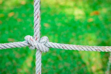 Rope knot in the grass background.