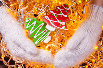 Christmas cookies in hand mittens