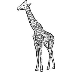 Sketch of a high African giraffe on white background. Vector illustration