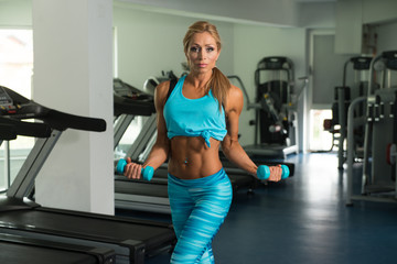 Mature Woman Doing Biceps Exercise With Dumbbells