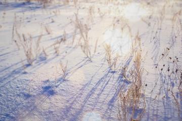 Blurred winter landscape snow
