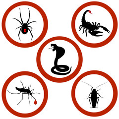 Set of Stop signs of black widow spider, snake cobra, black scorpion, cockroach, mosquito. Vector illustration