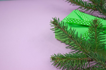 Green gift with polka dot ribbon and pine branches on pink background