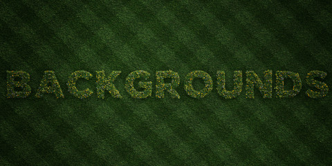 BACKGROUNDS - fresh Grass letters with flowers and dandelions - 3D rendered royalty free stock image. Can be used for online banner ads and direct mailers..