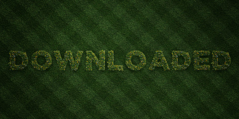 DOWNLOADED - fresh Grass letters with flowers and dandelions - 3D rendered royalty free stock image. Can be used for online banner ads and direct mailers..