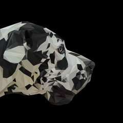 German dogue dog animal low poly design. Triangle vector illustration.