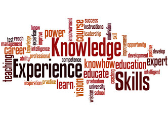 Knowledge Skills Experience, word cloud concept 4