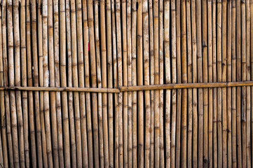 bamboo fence for background