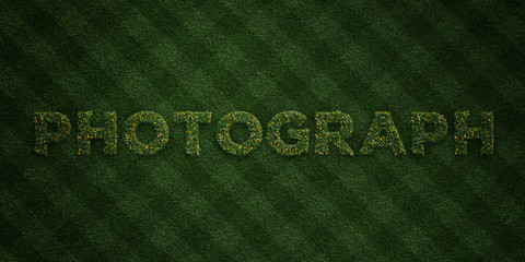 PHOTOGRAPH - fresh Grass letters with flowers and dandelions - 3D rendered royalty free stock image. Can be used for online banner ads and direct mailers..
