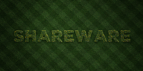 SHAREWARE - fresh Grass letters with flowers and dandelions - 3D rendered royalty free stock image. Can be used for online banner ads and direct mailers..