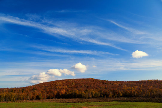 Peaceful view with blue sky, white clouds, autumn and green grass in Delmece Plateau in Yalova, Turkey
