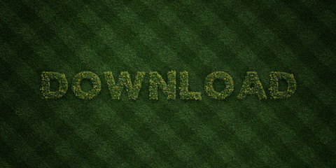 DOWNLOAD - fresh Grass letters with flowers and dandelions - 3D rendered royalty free stock image. Can be used for online banner ads and direct mailers..