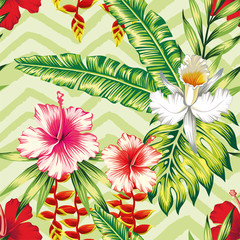 Hibiscus palm leaves orchid pattern