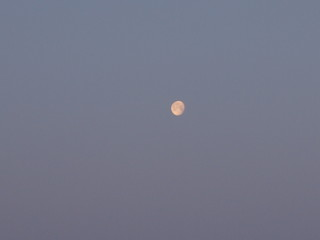 Луна в вечернем небе