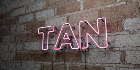 TAN - Glowing Neon Sign on stonework wall - 3D rendered royalty free stock illustration.  Can be used for online banner ads and direct mailers..