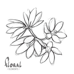 Sketch a delicate flower