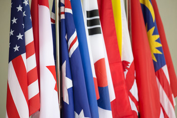 group of Asia Pacific international flags