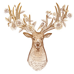 Deer head with antlers from the front decorated with flowers.