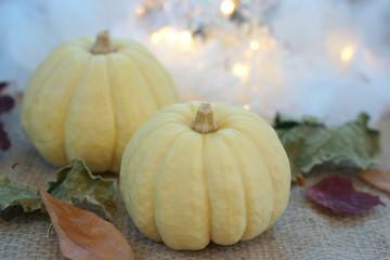 かぼちゃのアレンジメント