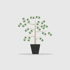 Money Tree Symbol of Wealthy